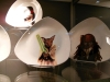 Designer cat plates
