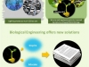 glowingplants-designengine