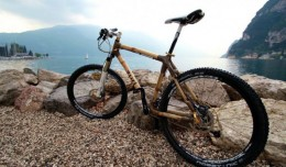 Zuri Bamboo Bicycle 03