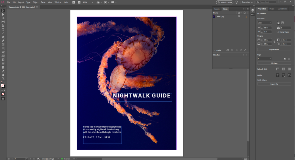 A screenshot from Adobe InDesign